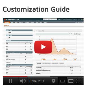 Megatron customization video guide