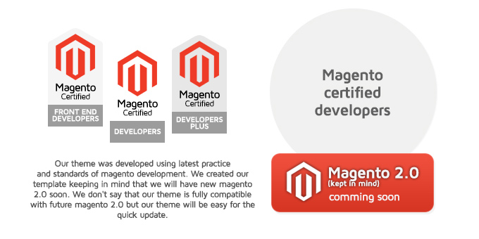 Magento certified developers picture