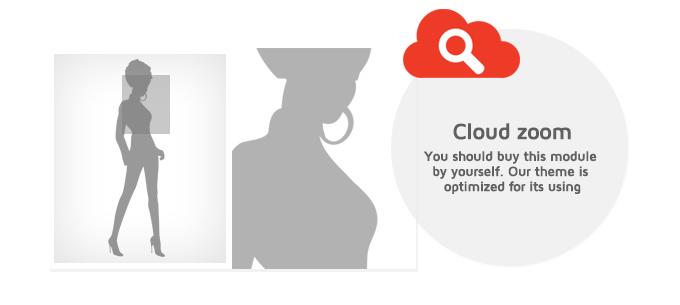 Megatron theme supports Cloud zoom option